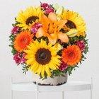 Valentins: 13€ Wertgutschein für das Blumen- und Geschenksortiment nur 5,07€