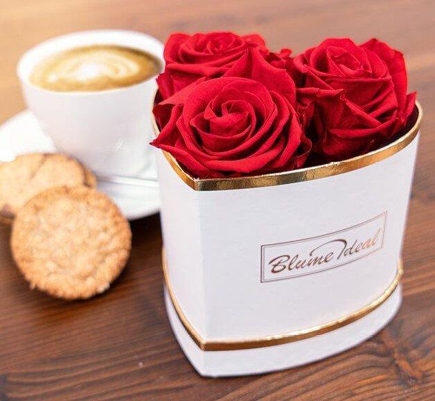 Übersicht: Top Angebote zu Blumen pünktlich zum Muttertag, z.B. Infinity Rosen für 34,98€