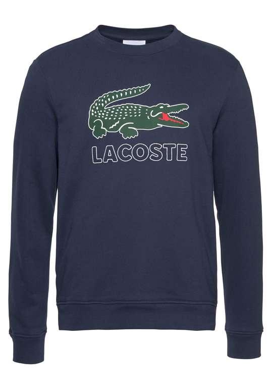 Lacoste Herren Sweatshirt in nachtblau für 40,46€ inkl. Versand (statt 67€)