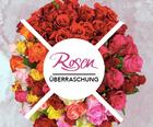 Blume Ideal Rosenüberraschung: Strauß mit 40 bunten Rosen für 22,98€