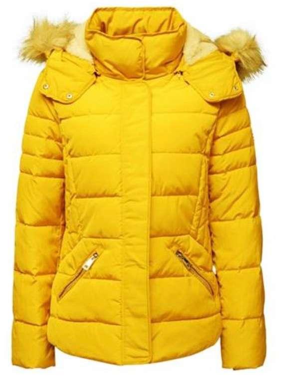 Esprit Damen Steppjacke mit 3M Thinsulate-Füllung für 74,99€ inkl. Versand (statt 82€)