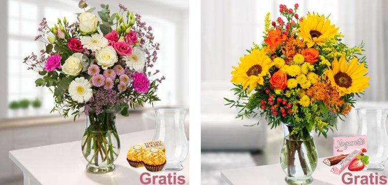 Floraprima Rabatt 2