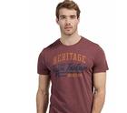 Tom Tailor: 20% Rabatt auf alle T-Shirts und Polohemden für Damen und Herren