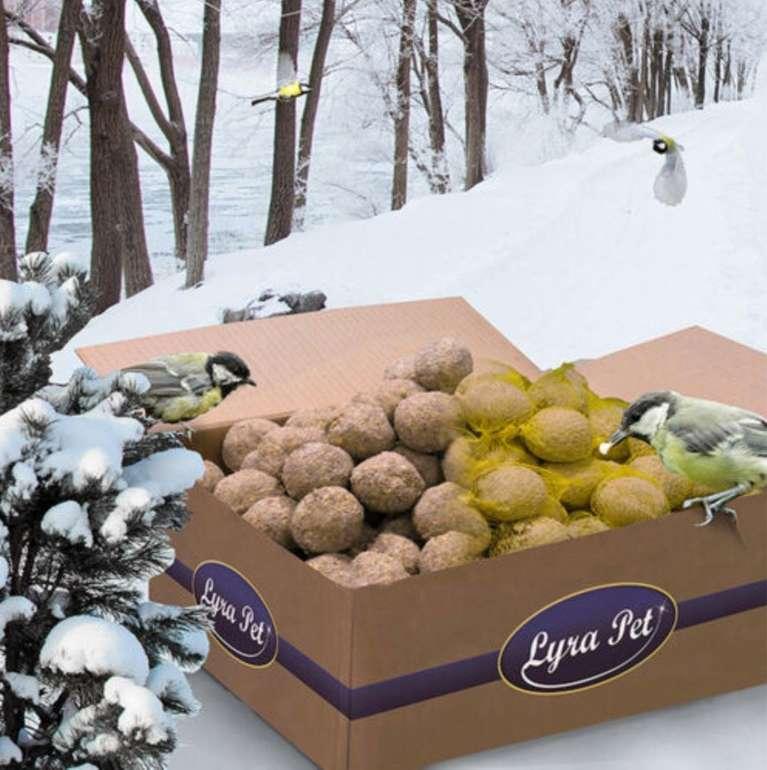 Perfekt für den Winter: 200 x 90g Lyra Pet Meisenknödel (Vogelfutter) für 14,99€