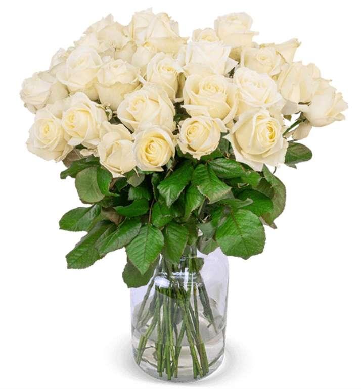 28 weiße Premium Rosen im Strauß mit 7 Tage Frischegarantie für 24,98€ inkl. Versand