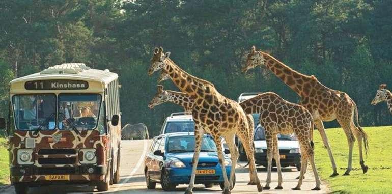 Vught Holland: Ab 2 Nächten 4* Van der Valk Vught und Safaripark Beekse Bergen ink. Frühstück ab 109€ pro Person