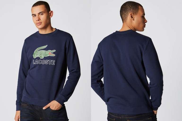 Lacoste-Sweatshirt1