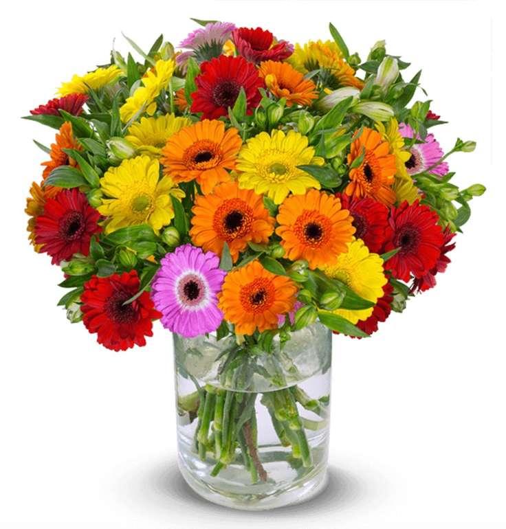 """Schnittblumen im Bund: Gerbera-Mix """"You Are The One"""" mit über 150 Blüten für 24,98€ inkl. Versand"""