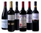 Weinprobierpaket Rioja (6 Flaschen) für 49,99€ inkl. Versand