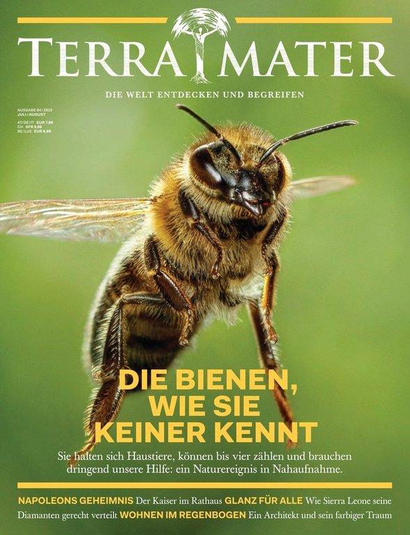 6 Ausgaben Terra Mater für 39€ + 30€ Amazon-Gutschein oder Verrechnungsscheck!