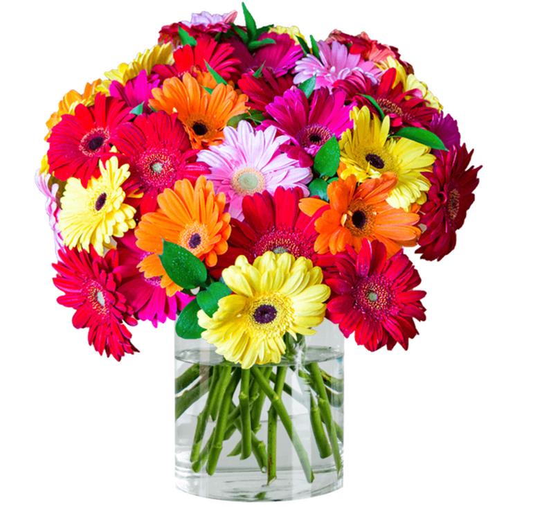 Blumenstrauß mit 35 Gerbera für 20,98€ inkl. Versand