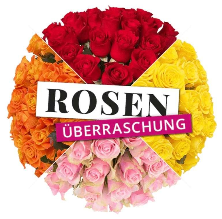 Blume Ideal Rosenüberraschung: Strauß mit 50 bunten Rosen für 27,98€ inkl. Versand
