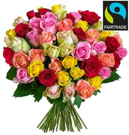 37 bunte Fairtrade Rosen mit 50cm Stiellänge im Strauß für 21,98€ inkl. Versand