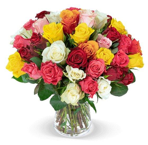 40 bunte Rosen mit 50cm Länge für 24,98€ inkl. Versand