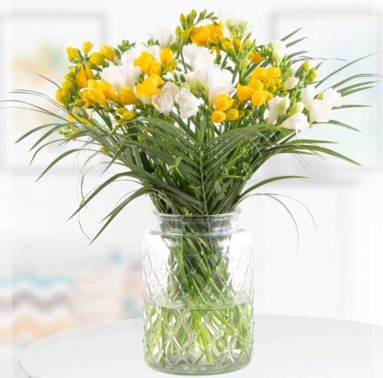 Blumenshop: Freesienstrauß mit 40 gelben und weißen Freesien für 24,90€ inkl. Versand (statt 38€)