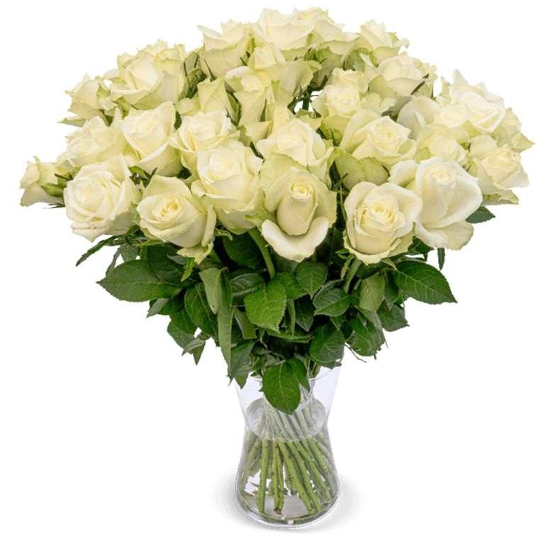 24 weiße Premium Rosen im Strauß mit 7 Tage Frischegarantie für 21,58€ inkl. Versand