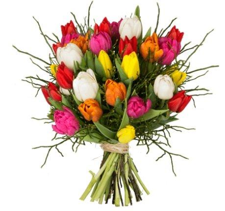 """Blumenstrauß """"Modern Love"""" mit 20 bunte Tulpen für 19,98€ inkl. VSK"""
