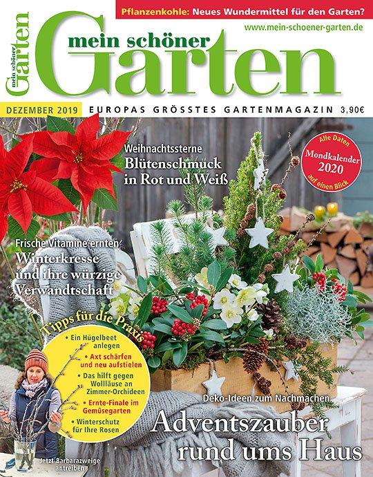 """4 Ausgaben """"Mein schöner Garten"""" für 16€ + 10€ Verrechnungsscheck"""