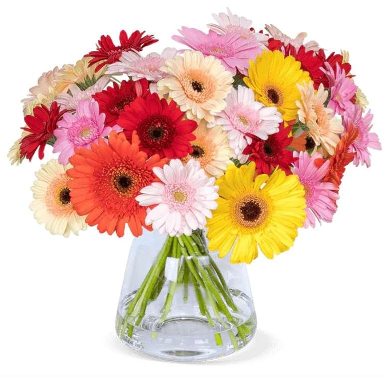 40 bunte Gerbera Blumen mit 50cm Stiellänge für 20,98€ inkl. Versand