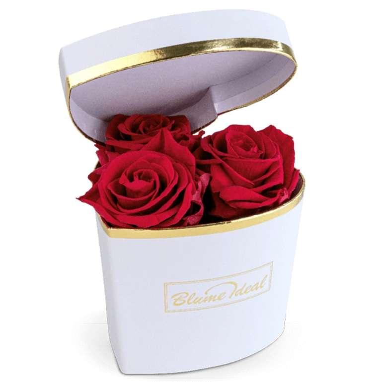 """Rosenbox """"Valentine Lovebox"""" mit 3 Infinity Rosen (bis zu 3 Jahre haltbar) für 34,98€ inkl. Versand"""