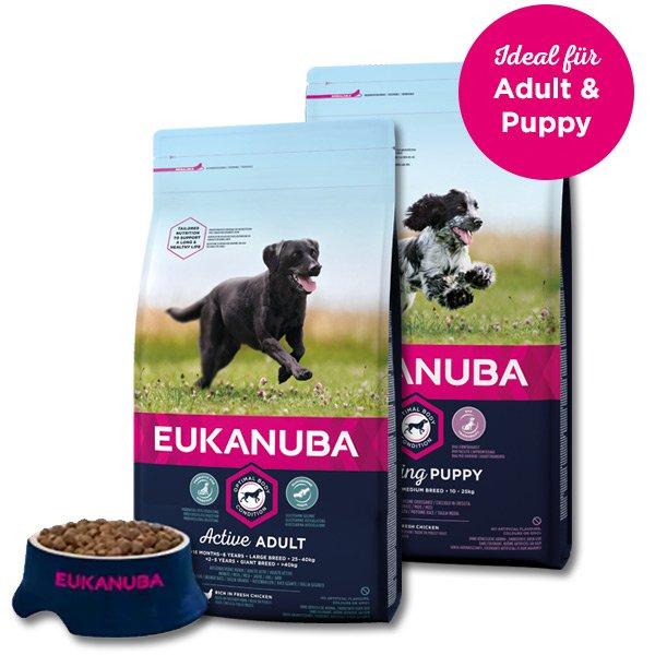 Gratisprobe: Eukanuba Hundefutter Adult oder Puppy kostenlos erhalten