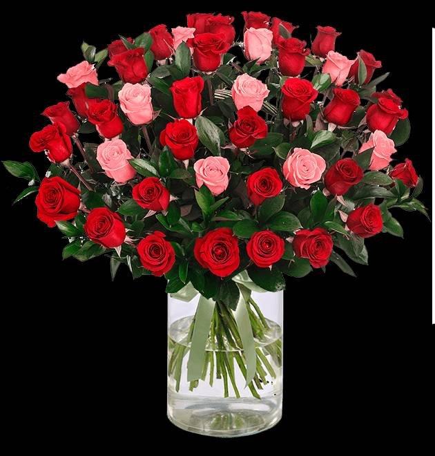 """Rosenarrangement """"LovelyRoses"""" mit 40 Rosen für 24,98€ inkl. VSK"""
