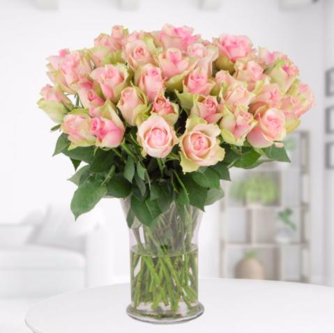 Blumenshop: 40 Rosen im zarten Pastell für 24,90€ inkl. Versand