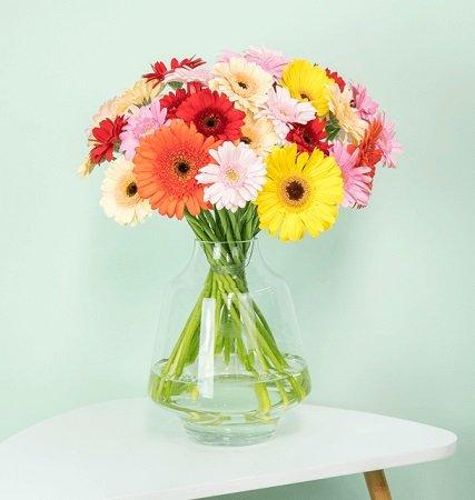 Blumenstrauß mit 33 Gerbera für 20,98€ inkl. Versand