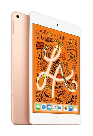 Apple iPad Mini (2019) - 64 GB (WiFi + 4G) in Gold für 443,59€