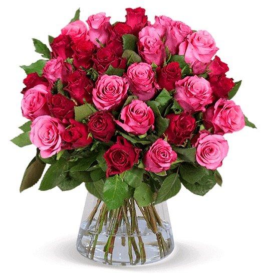 """37 Rosen im Blumenstrauß """"Crazy in Love"""" für 24,98€ inkl. Versand (statt 37€)"""