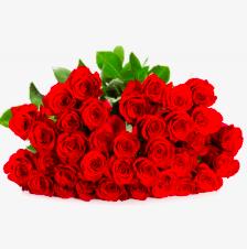 BlumeIdeal: 12% Rabatt auf alle Blumen-Deals - z.B. 25 rote Rosen für 20,82€