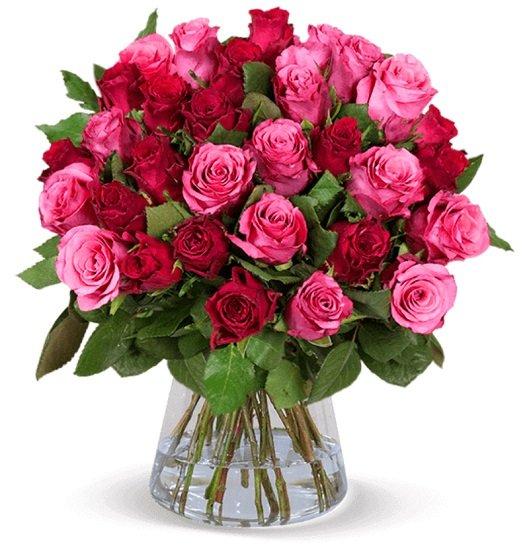 """Strauß aus 37 """"Romantic Roses"""" mit 50 cm Stiellänge für 25,98€ inkl. Versand (statt 44€)"""