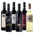 Wein Probierpaket: Sechs prämierte Weine aus Spanien + 4 Gläser für 44,99€