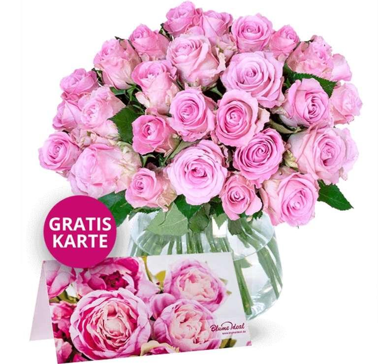 35 rosefarbene Rosen im Strauß für 22,98€ inkl. Versand (nur 0,66€ pro Rose!)