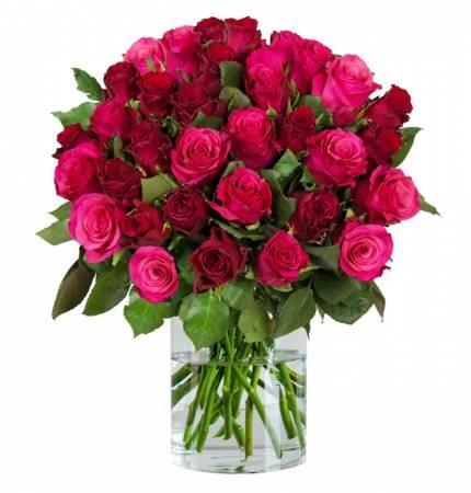 """Strauß aus 38 """"Romantic Roses"""" mit 50 cm Stiellänge für 24,98€ inkl. Versand"""