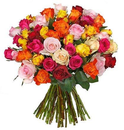 28 bunte Rosen mit 50cm Länge für 20,98€ inkl. Versand