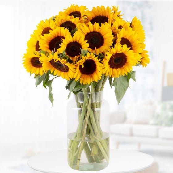 20 Sonnenblumen mit ca. 60cm Stiellänge für 27,90€ oder 10 Stück für 19,90€ inkl. Versand