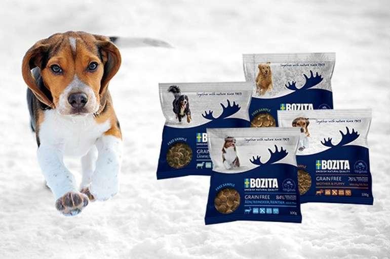 Bozita Hunde Trockenfutter Probe (100 Gramm) gratis bestellen