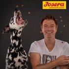 Gratis: 2 x Josera Hundefutter-Proben + 5€ Futtergutschein kostenlos bestellen