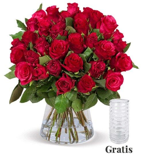 25 Rote Rosen (50cm Länge) nur 24,98€ inkl. Versand + Gratis-Vase!