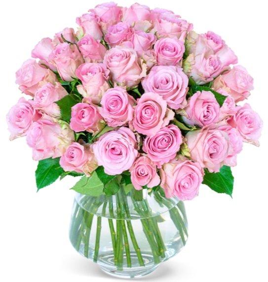 """Blumenstrauß mit 41 Rosen """"PinkDiamonds"""" (ca. 50 cm Länge) für 25,98€ inkl. Versand (statt 41€)"""