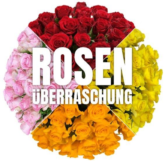 Blume Ideal Rosenüberraschung: Strauß mit 40 bunten Rosen für 24,98€