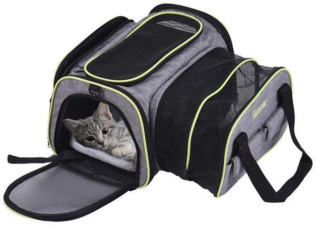 DADYPET Tier-Transporttasche z.B. für Katzen oder kleine Hunde ab 21,69€