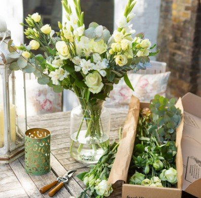 Freddies Flowers - wöchentliche Blumenlieferung die ersten 2 Boxen für je 20€ inkl. Versand (statt 30€)