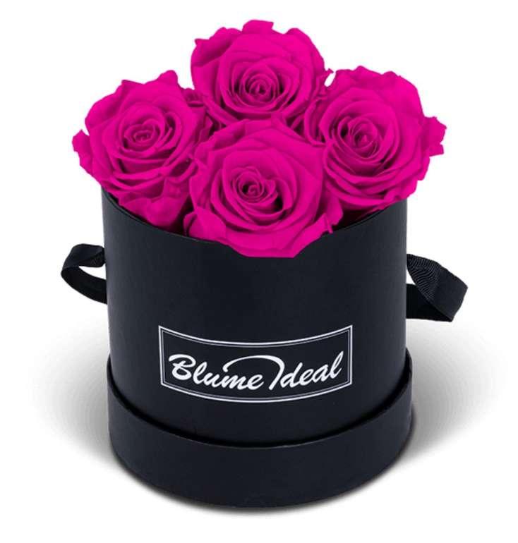 Rosenbox mit 4 Infinity Rosen (mehrere Jahre haltbar) für 32,98€ inkl. Versand