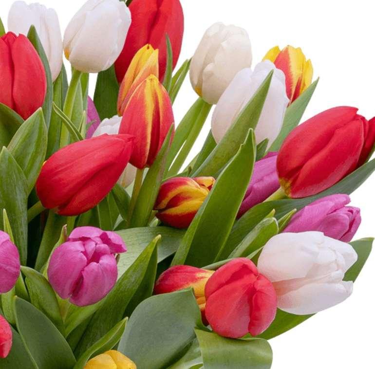 33 bunte Tulpen im Strauß für 25,98€ inkl. Versand (statt 41€)