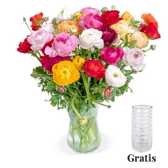 31 bunte Ranunkeln im Strauß + Vase für 24,98€ inkl. VSK