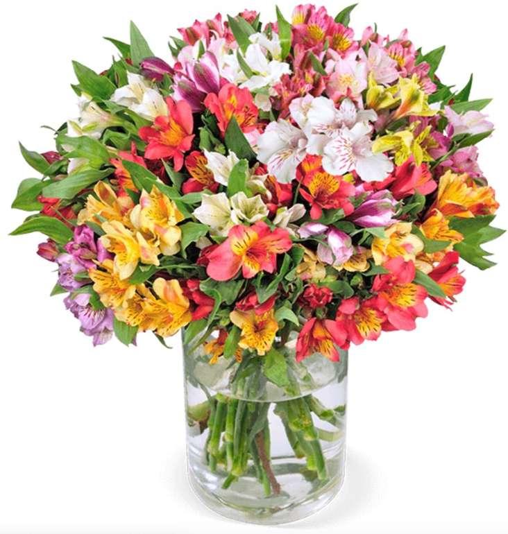 22 Inkalilien im Strauß mit bis zu 200 Blüten + gratis Vase für 27,98€ inkl. Versand