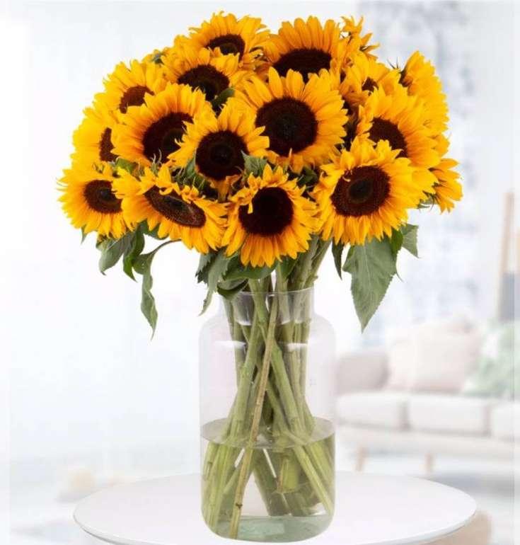 20 Sonnenblumen mit ca. 60cm Stiellänge für 24,90€ inkl. Versand