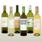 6 Flaschen spanischer Weißwein im Weinpaket für 30€ inkl. Versand
